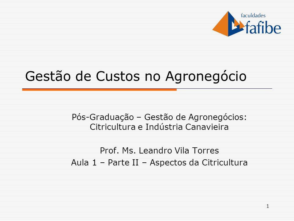 1 Gestão de Custos no Agronegócio Pós-Graduação – Gestão de Agronegócios: Citricultura e Indústria Canavieira Prof. Ms. Leandro Vila Torres Aula 1 – P