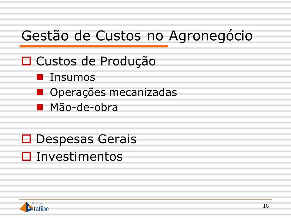 18 Gestão de Custos no Agronegócio Custos de Produção Insumos Operações mecanizadas Mão-de-obra Despesas Gerais Investimentos