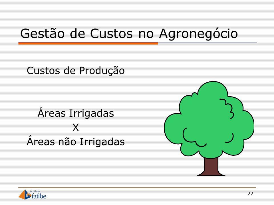 22 Gestão de Custos no Agronegócio Custos de Produção Áreas Irrigadas X Áreas não Irrigadas