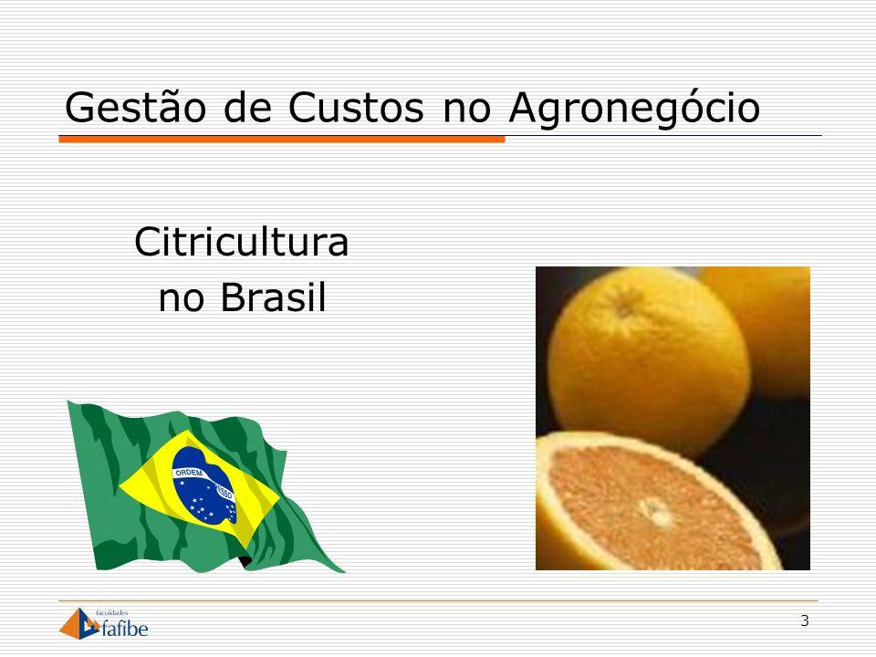 14 Gestão de Custos no Agronegócio Insumos Concentração de Fornecedores Redução de custos