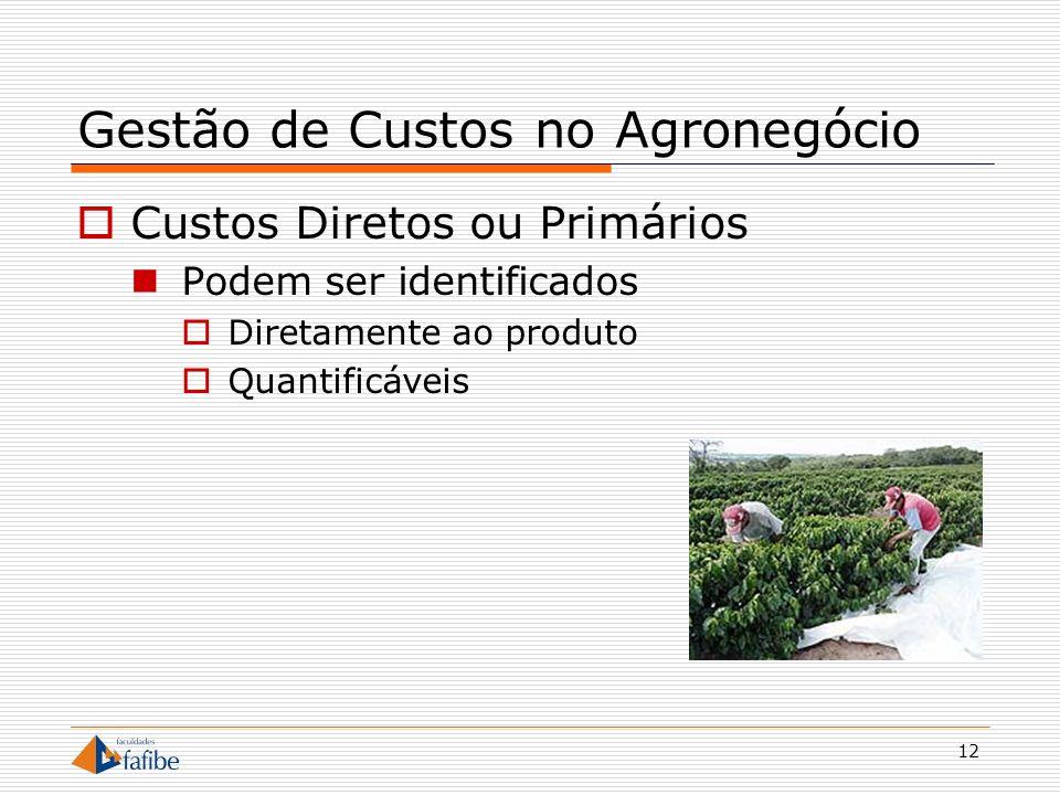12 Gestão de Custos no Agronegócio Custos Diretos ou Primários Podem ser identificados Diretamente ao produto Quantificáveis