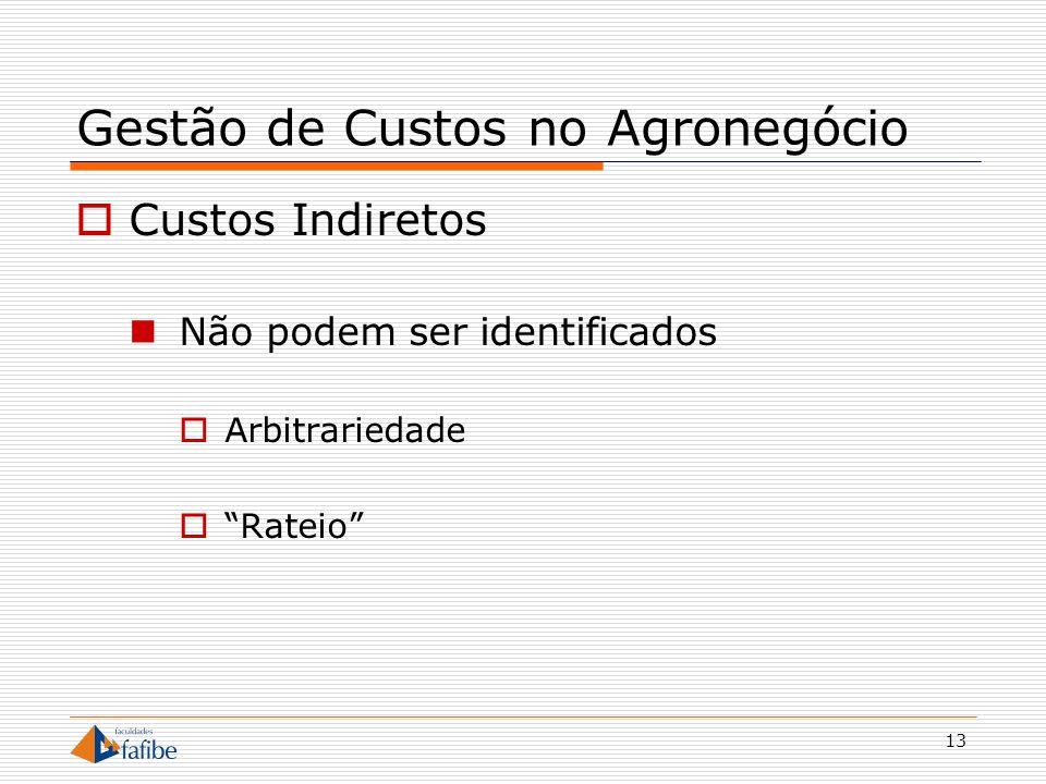 13 Gestão de Custos no Agronegócio Custos Indiretos Não podem ser identificados Arbitrariedade Rateio