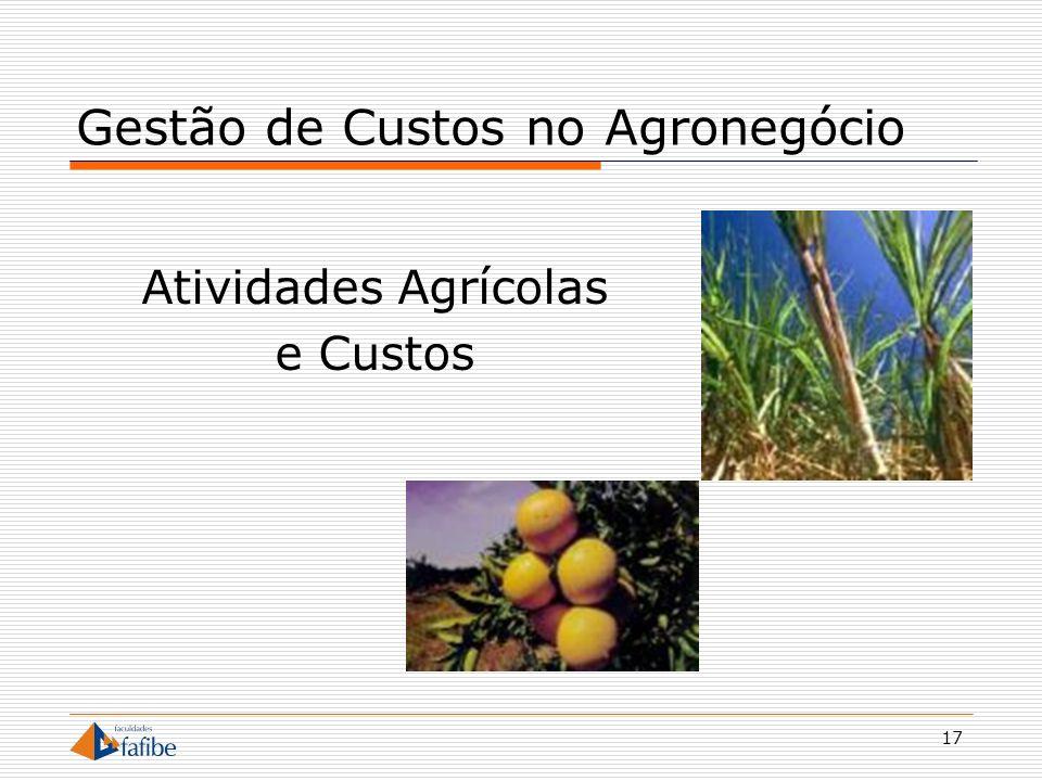 17 Gestão de Custos no Agronegócio Atividades Agrícolas e Custos