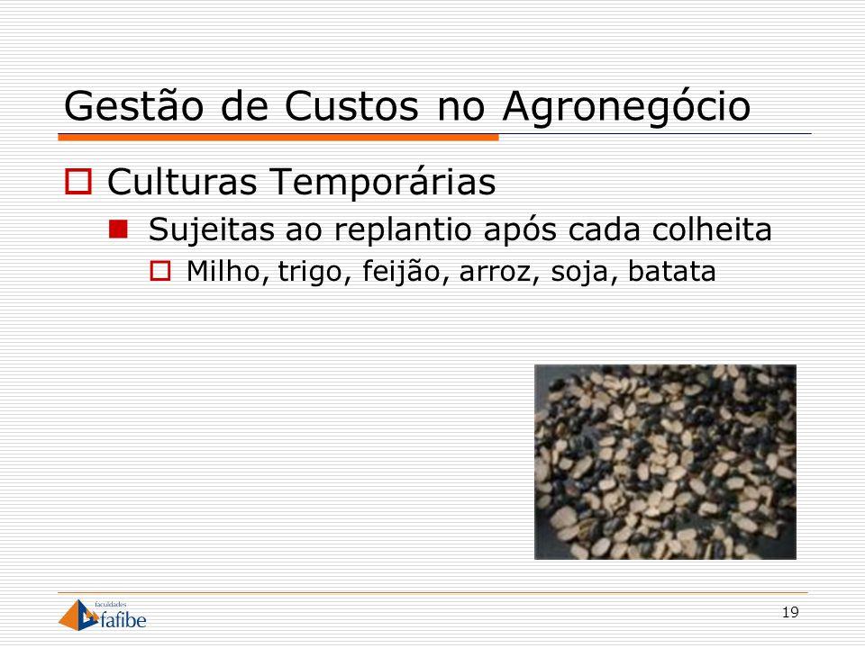19 Gestão de Custos no Agronegócio Culturas Temporárias Sujeitas ao replantio após cada colheita Milho, trigo, feijão, arroz, soja, batata
