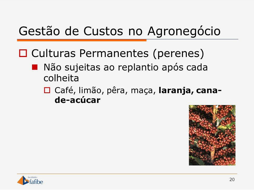 20 Gestão de Custos no Agronegócio Culturas Permanentes (perenes) Não sujeitas ao replantio após cada colheita Café, limão, pêra, maça, laranja, cana-
