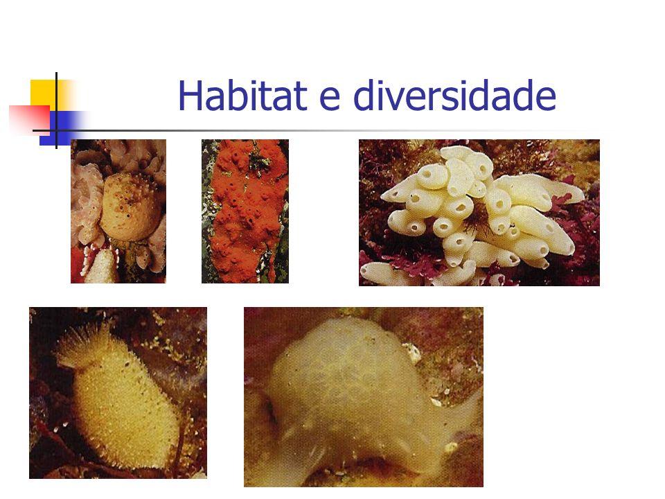 Habitat e diversidade