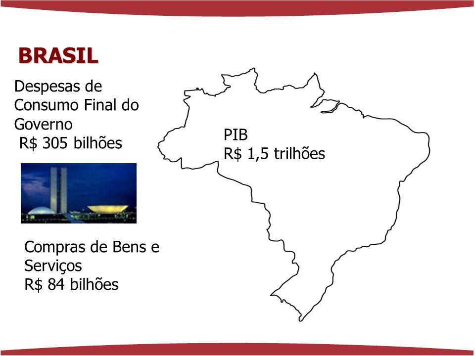 www.florenciaferrer.com.br PIB R$ 1,5 trilhões Despesas de Consumo Final do Governo R$ 305 bilhões Compras de Bens e Serviços R$ 84 bilhões BRASIL