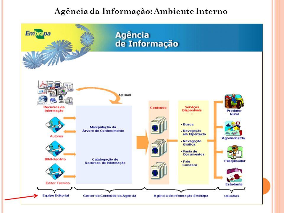 Agência da Informação: Ambiente Interno