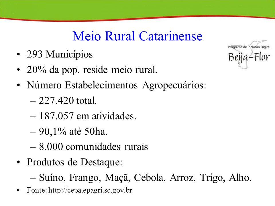 Programa de Inclusão Digital Beija-Flor Impacto da TI no Processo Decisório do Agricultor Familiar (2002/2003).