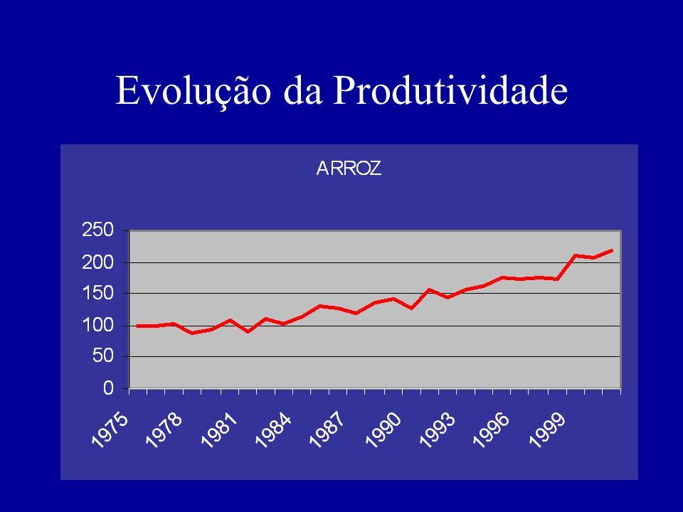 Evolução da Produtividade