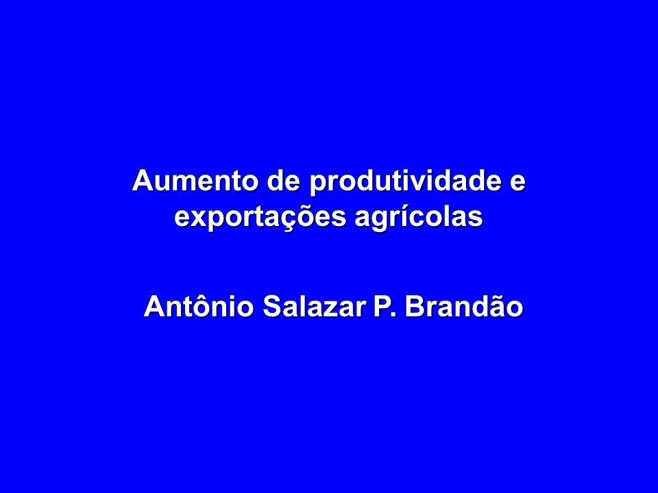 Aumento de produtividade e exportações agrícolas Antônio Salazar P. Brandão