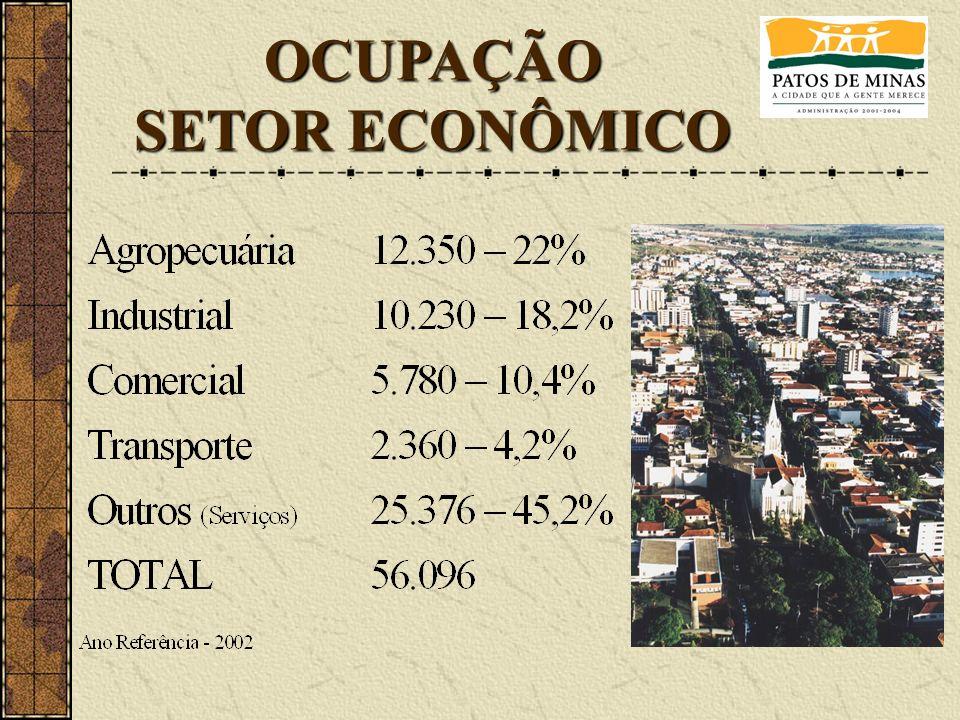OCUPAÇÃO SETOR ECONÔMICO