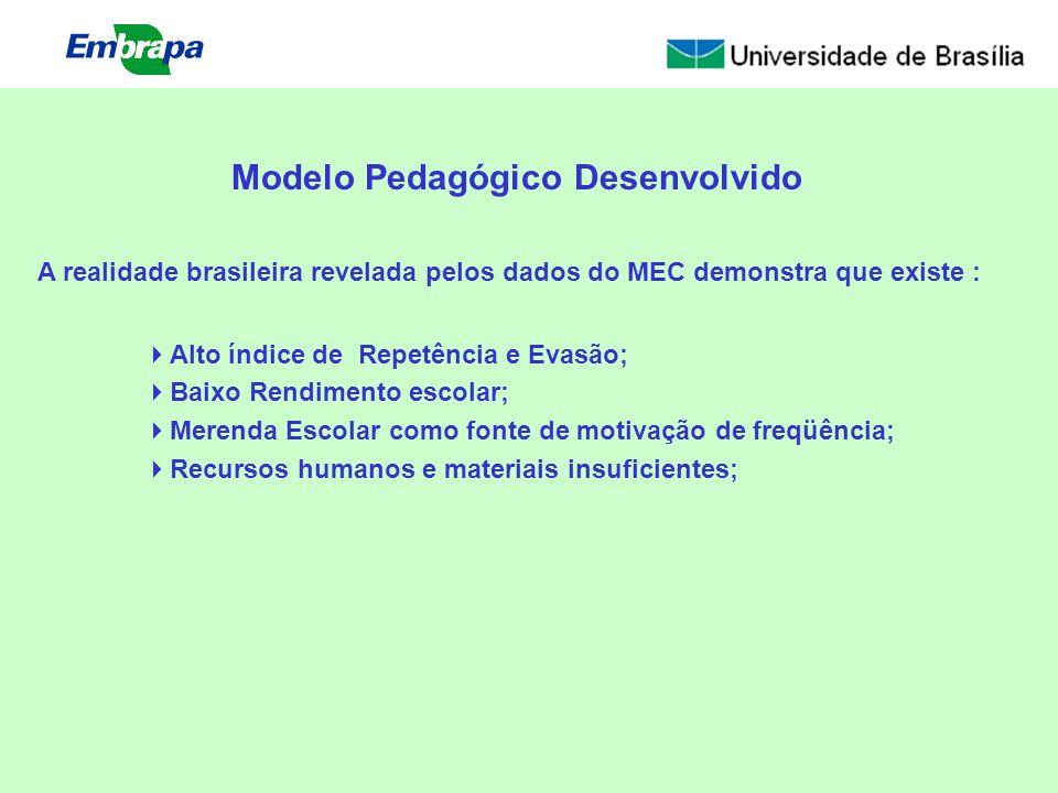 A realidade brasileira revelada pelos dados do MEC demonstra que existe : Alto índice de Repetência e Evasão; Baixo Rendimento escolar; Merenda Escola