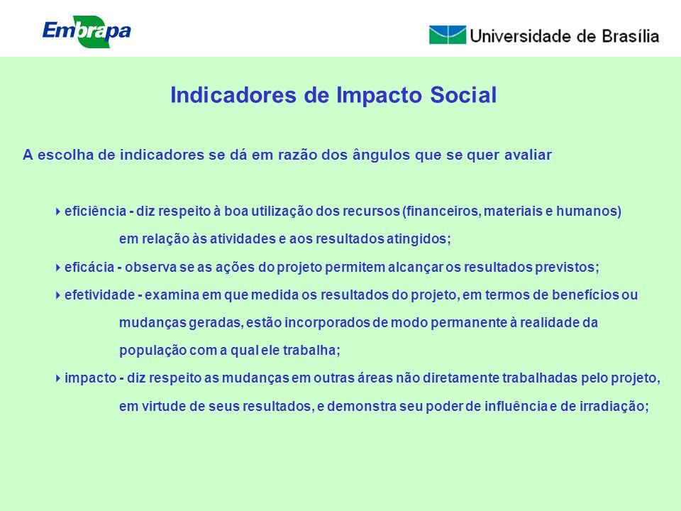 A escolha de indicadores se dá em razão dos ângulos que se quer avaliar: Indicadores de Impacto Social eficiência - diz respeito à boa utilização dos