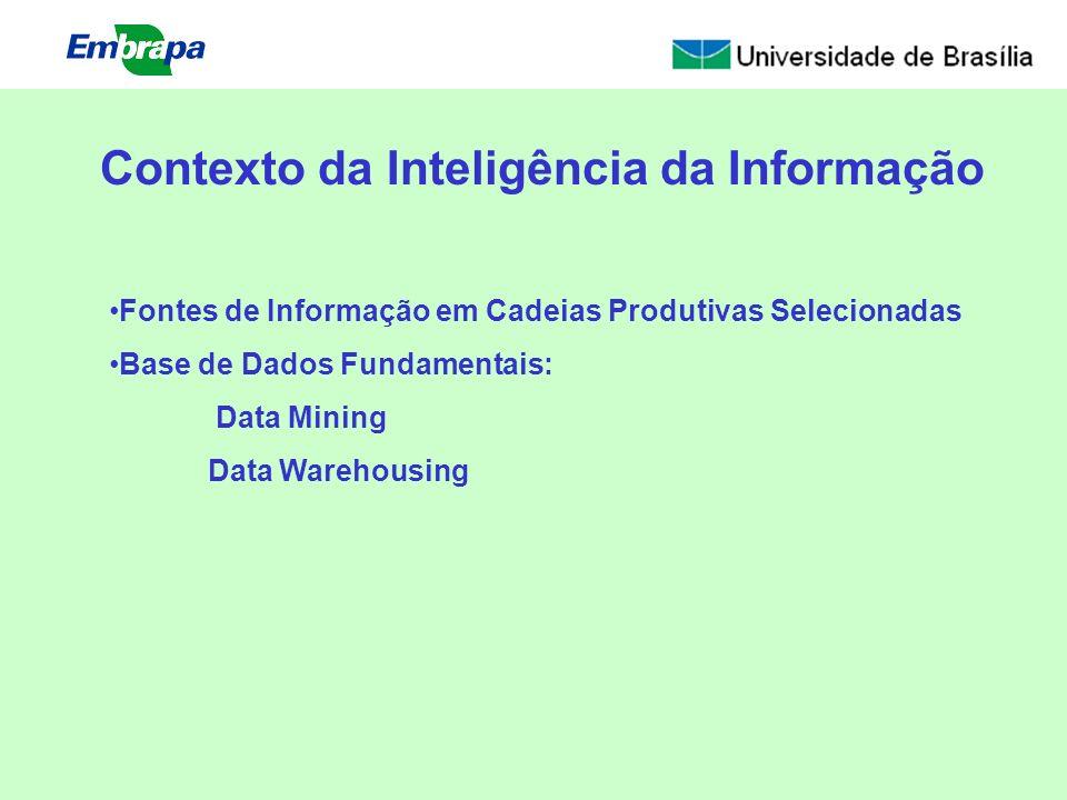 Contexto da Inteligência da Informação Fontes de Informação em Cadeias Produtivas Selecionadas Base de Dados Fundamentais: Data Mining Data Warehousin