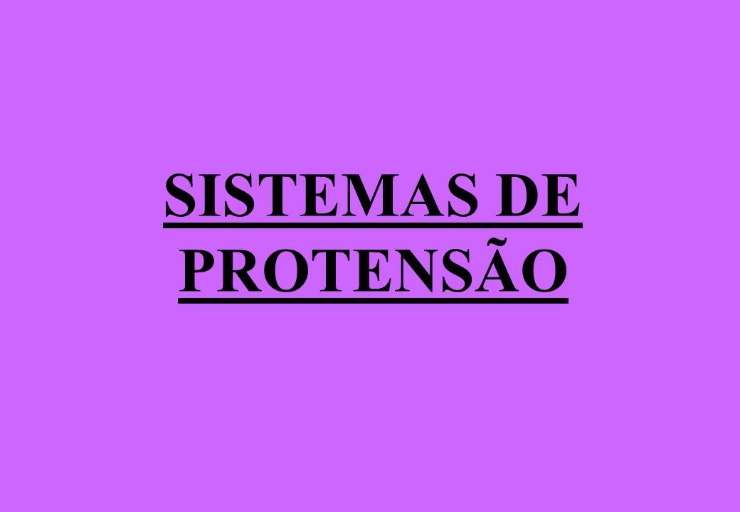 SISTEMAS DE PROTENSÃO
