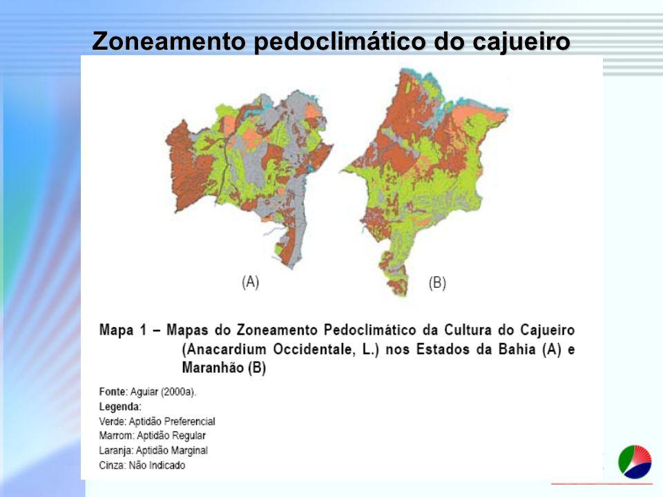 Zoneamento pedoclimático do cajueiro