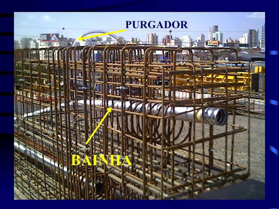 BAINHA PURGADOR