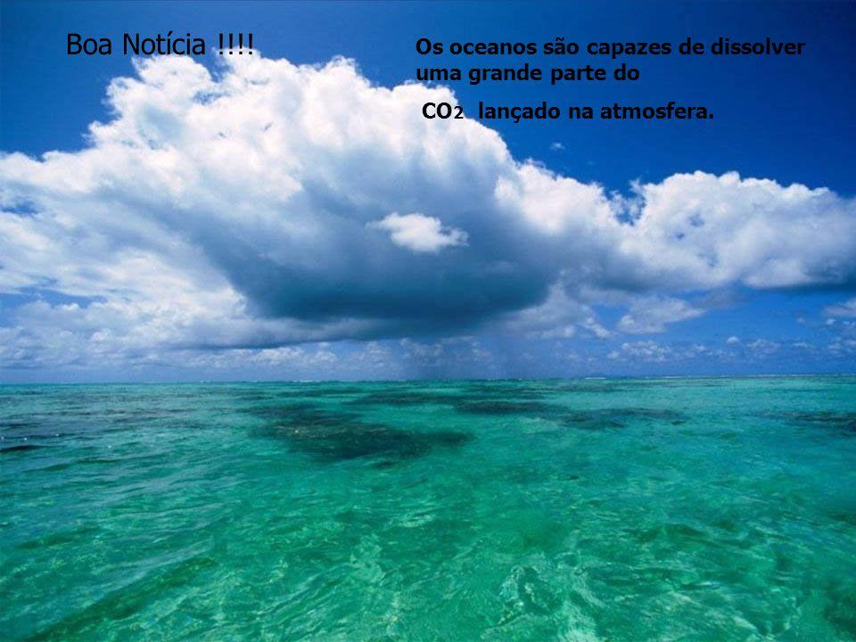 Os oceanos são capazes de dissolver uma grande parte do CO 2 lançado na atmosfera. Boa Notícia !!!!