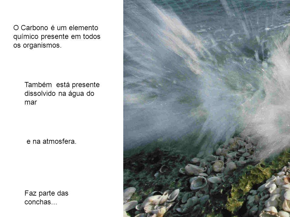O Carbono é um elemento químico presente em todos os organismos. Também está presente dissolvido na água do mar e na atmosfera. Faz parte das conchas.