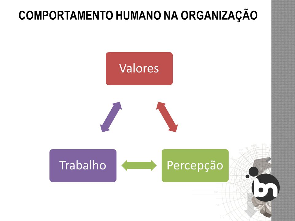 ValoresPercepçãoTrabalho COMPORTAMENTO HUMANO NA ORGANIZAÇÃO
