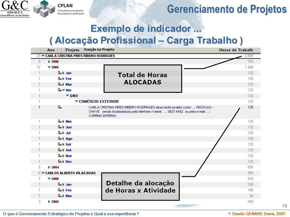 O que é Gerenciamento Estratégico de Projetos e Qual a sua importância ? © Danilo GENARE Denis, 2007 13 Exemplo de indicador... ( Alocação Profissiona