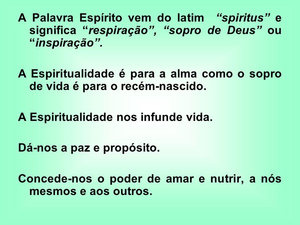 A Palavra Espírito vem do latim spiritus e significa respiração, sopro de Deus ouinspiração. A Espiritualidade é para a alma como o sopro de vida é pa