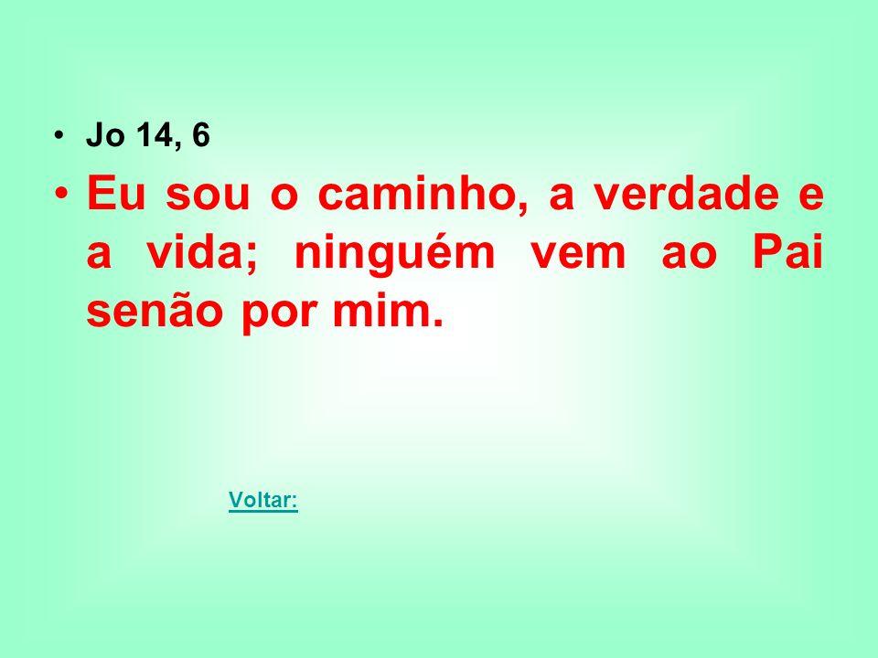 Jo 14, 6 Eu sou o caminho, a verdade e a vida; ninguém vem ao Pai senão por mim. Voltar: