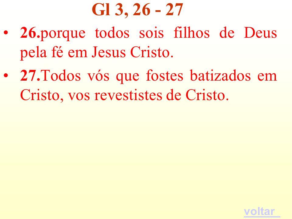 26.porque todos sois filhos de Deus pela fé em Jesus Cristo. 27.Todos vós que fostes batizados em Cristo, vos revestistes de Cristo. Gl 3, 26 - 27 vol