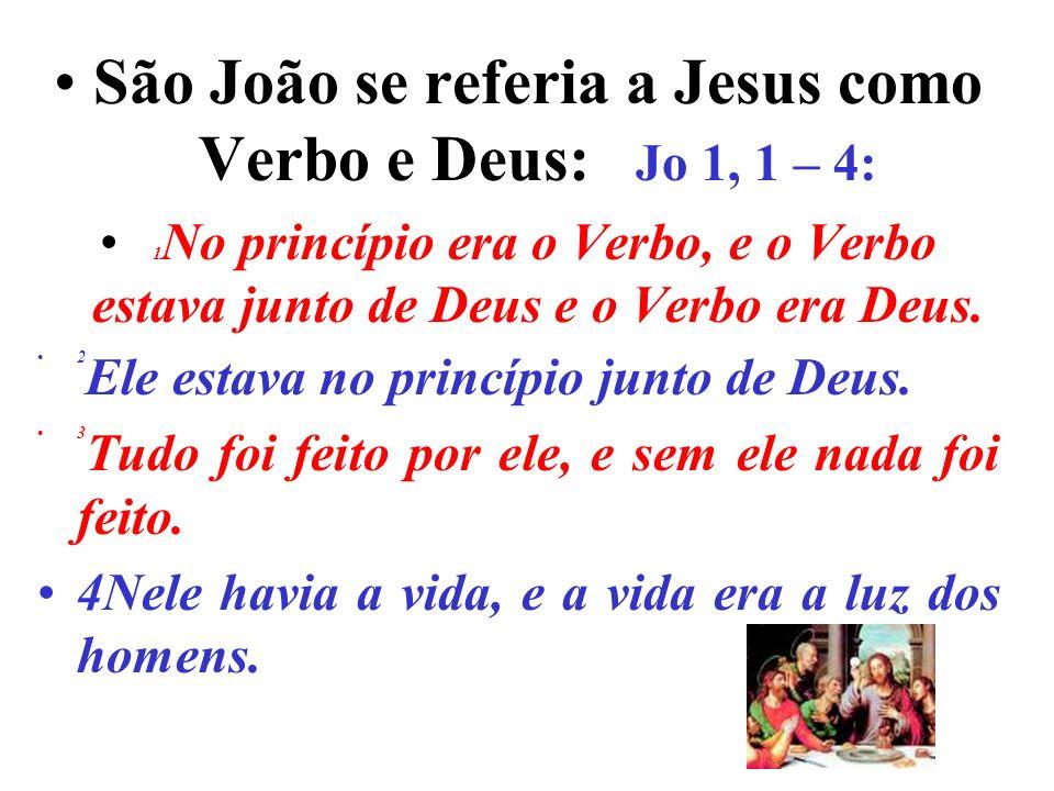 São João se referia a Jesus como Verbo e Deus: Jo 1, 1 – 4: 1 No princípio era o Verbo, e o Verbo estava junto de Deus e o Verbo era Deus.