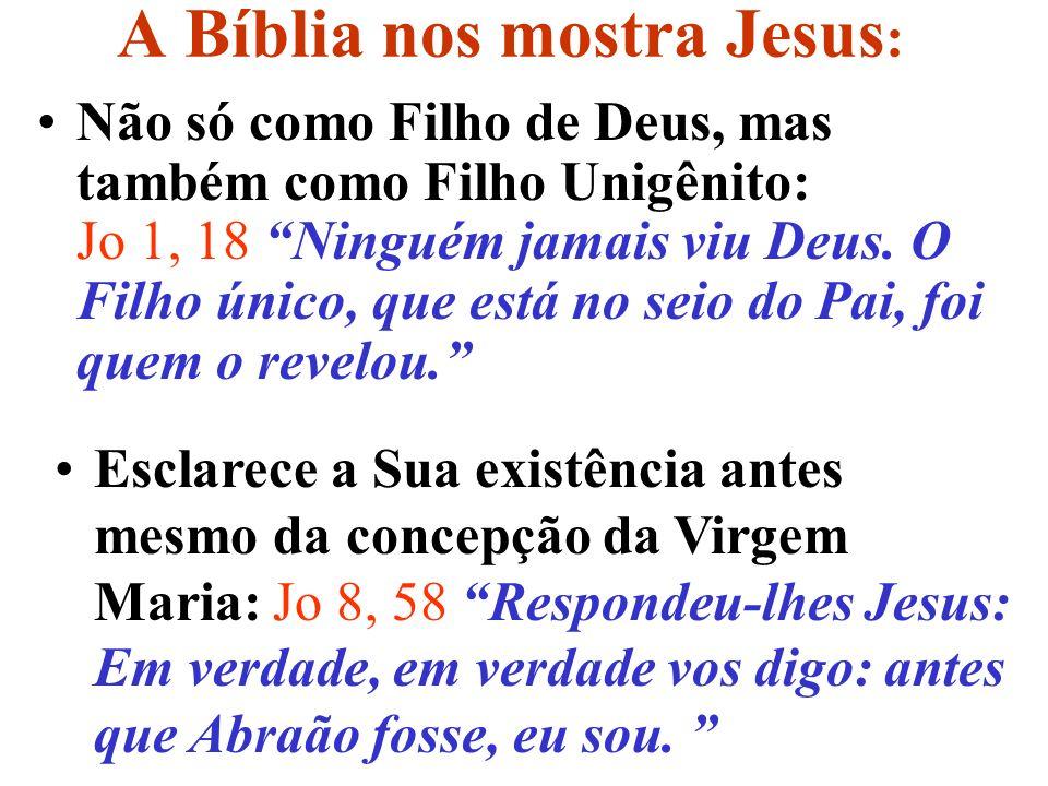 A Bíblia nos mostra Jesus: Afirma que Ele e o Pai são pessoas distintas: Jo 8, 16 E, se julgo, o meu julgamento é conforme a verdade, porque não estou sozinho, mas comigo está o Pai que me enviou.