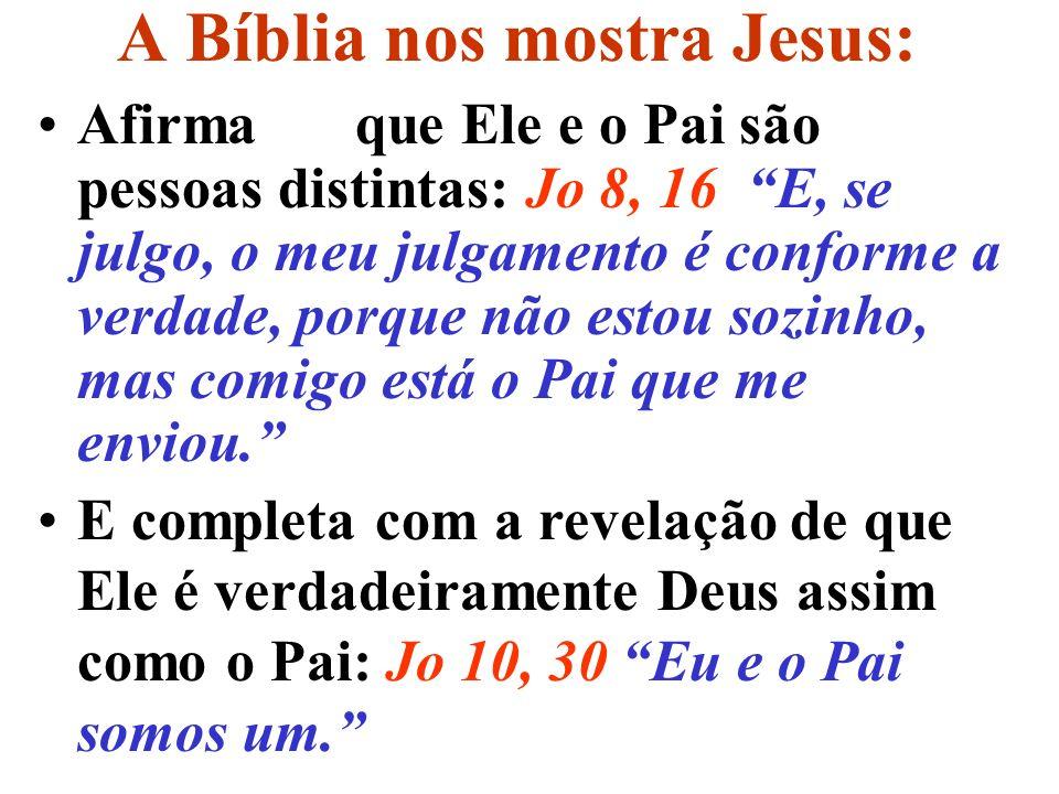 A Bíblia nos mostra Jesus: Portanto devemos crer que Cristo é o Filho Unigênito de Deus; e verdadeiro Filho de Deus; que sempre existiu com o Pai; que uma é a pessoa do Filho, outra, a do Pai; que Ele tem uma só natureza com o Pai.