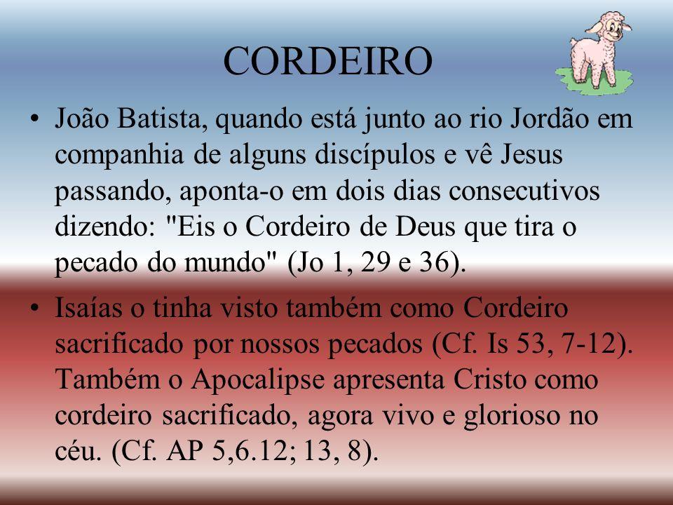 CORDEIRO João Batista, quando está junto ao rio Jordão em companhia de alguns discípulos e vê Jesus passando, aponta-o em dois dias consecutivos dizen