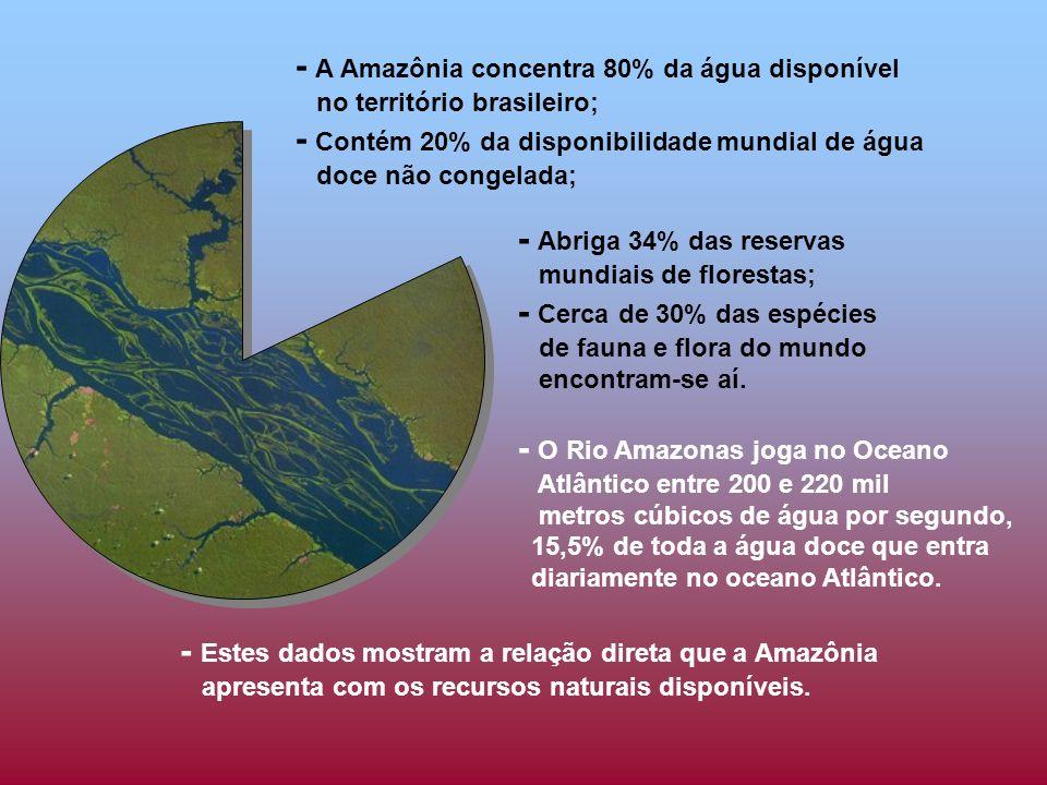 - A Amazônia concentra 80% da água disponível no território brasileiro; - Contém 20% da disponibilidade mundial de água doce não congelada; - Abriga 34% das reservas mundiais de florestas; - Cerca de 30% das espécies de fauna e flora do mundo encontram-se aí.