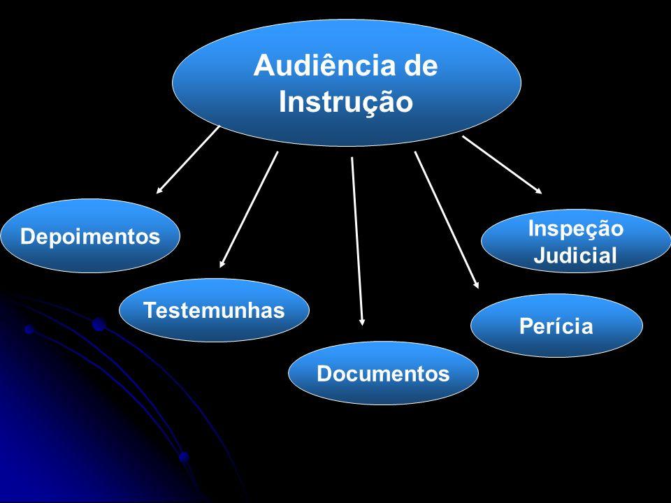 Audiência de Instrução Depoimentos Testemunhas Perícia Documentos Inspeção Judicial