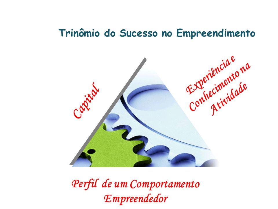 Trinômio do Sucesso no Empreendimento Capital Experiência e Conhecimento na Atividade Perfil de um Comportamento Empreendedor