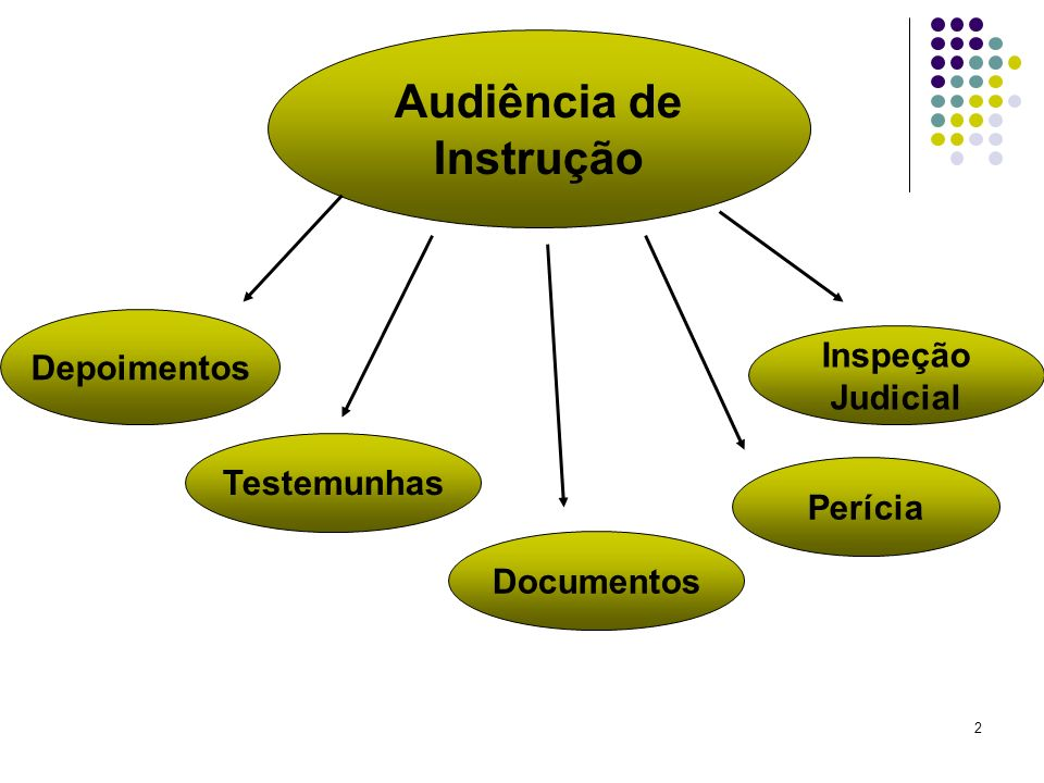 2 Audiência de Instrução Depoimentos Testemunhas Perícia Documentos Inspeção Judicial