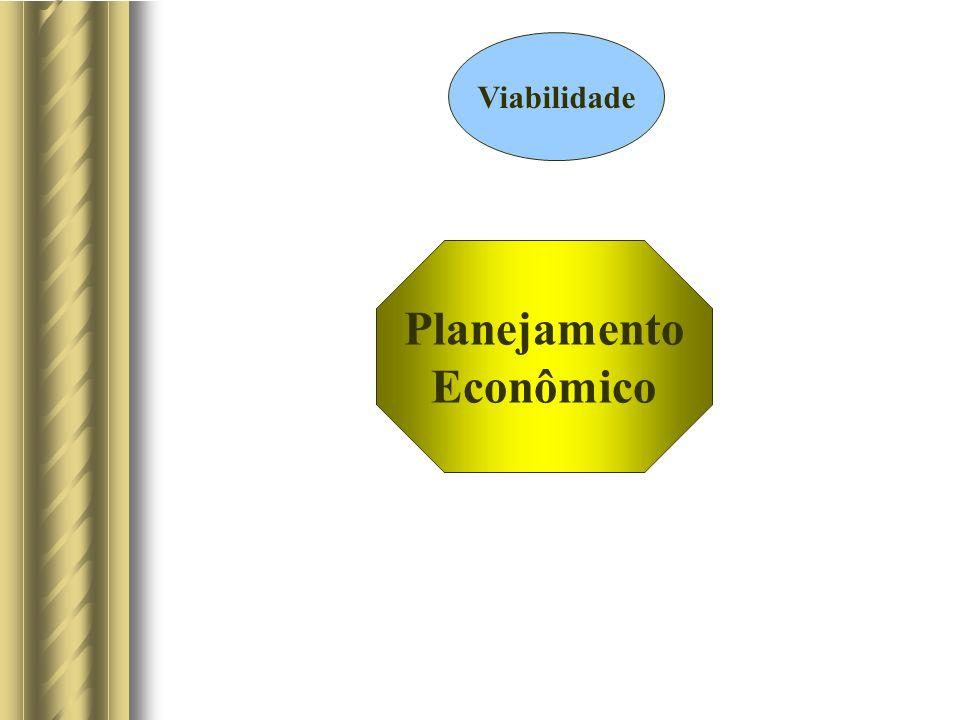 Planejamento Econômico Viabilidade