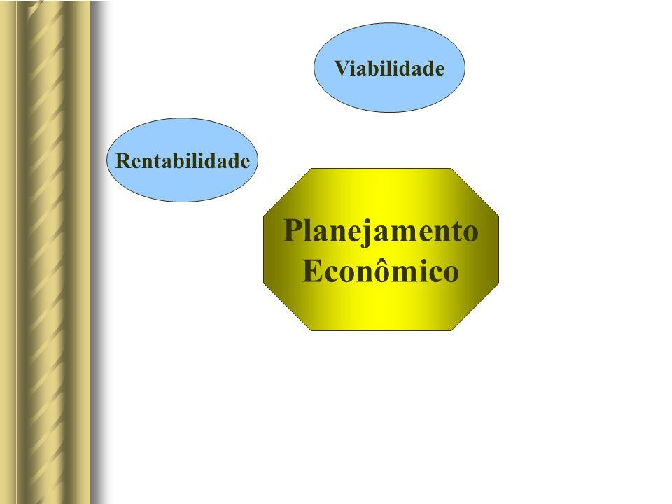 Planejamento Econômico Viabilidade Rentabilidade