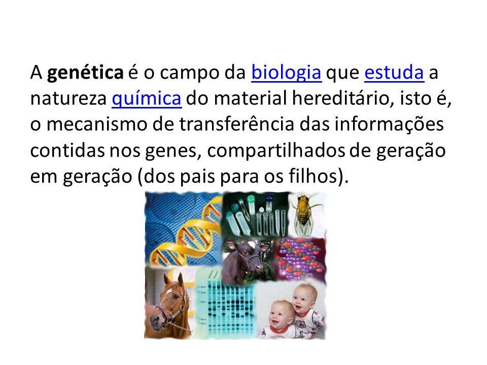 A genética é o campo da biologia que estuda a natureza química do material hereditário, isto é, o mecanismo de transferência das informações contidas