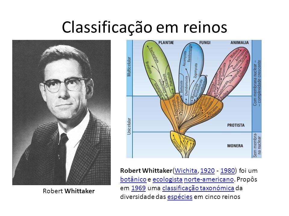 Classificação em reinos Robert Whittaker Robert Whittaker(Wichita, 1920 - 1980) foi um botânico e ecologista norte-americano. Propôs em 1969 uma class