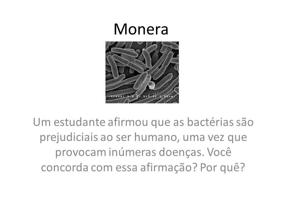 Monera Um estudante afirmou que as bactérias são prejudiciais ao ser humano, uma vez que provocam inúmeras doenças. Você concorda com essa afirmação?