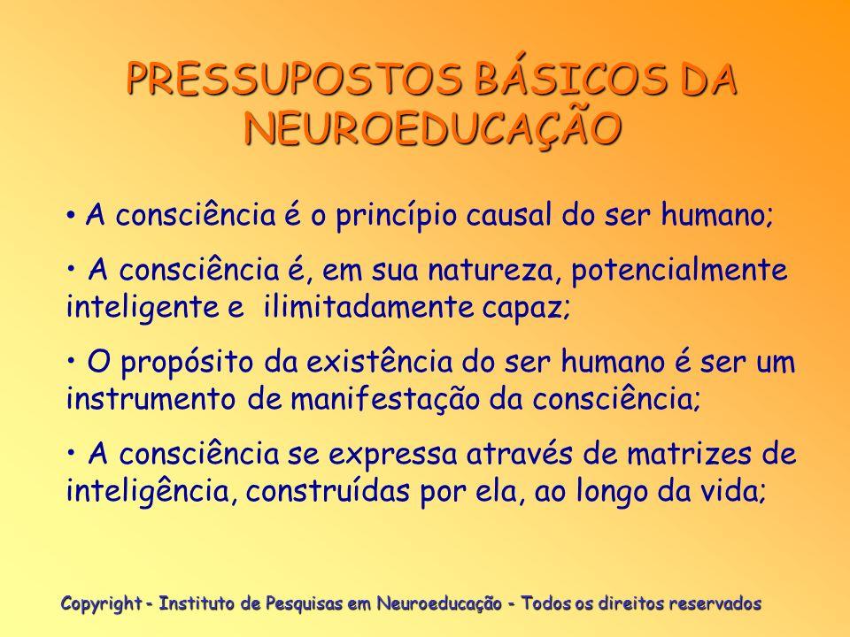 Copyright - Instituto de Pesquisas em Neuroeducação - Todos os direitos reservados MEIO: Neuroeducação Modelo sistêmico de intervenções evolutivas des