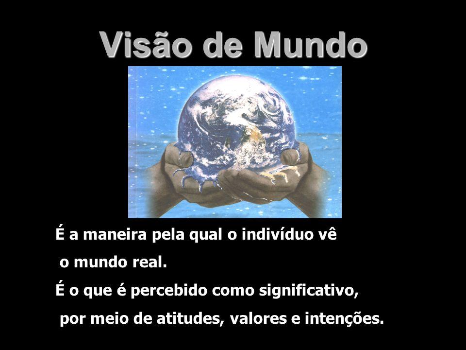 É a maneira pela qual o indivíduo vê o mundo real. É o que é percebido como significativo, por meio de atitudes, valores e intenções.