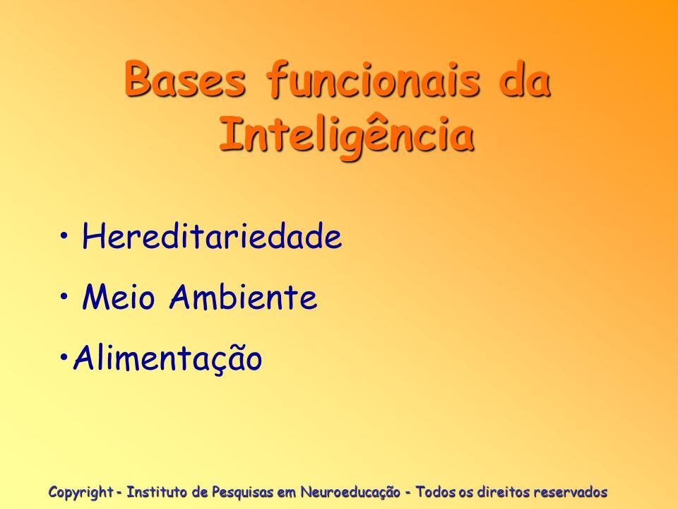 Copyright - Instituto de Pesquisas em Neuroeducação - Todos os direitos reservados Natureza da Inteligência.