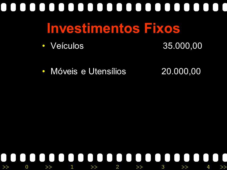 >>0 >>1 >> 2 >> 3 >> 4 >> Investimentos Fixos Veículos 35.000,00