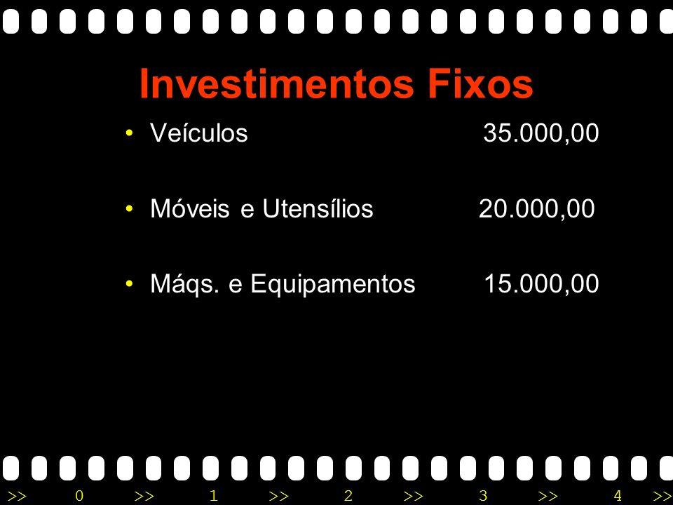 >>0 >>1 >> 2 >> 3 >> 4 >> Investimentos Fixos Veículos 35.000,00 Móveis e Utensílios 20.000,00