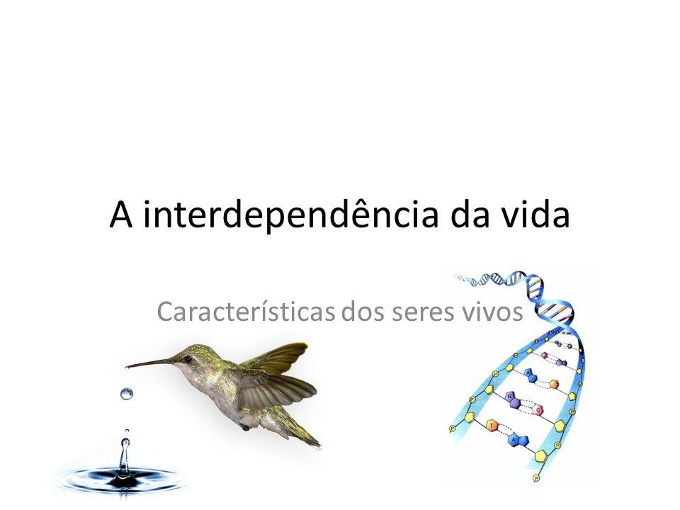 A interdependência da vida Características dos seres vivos