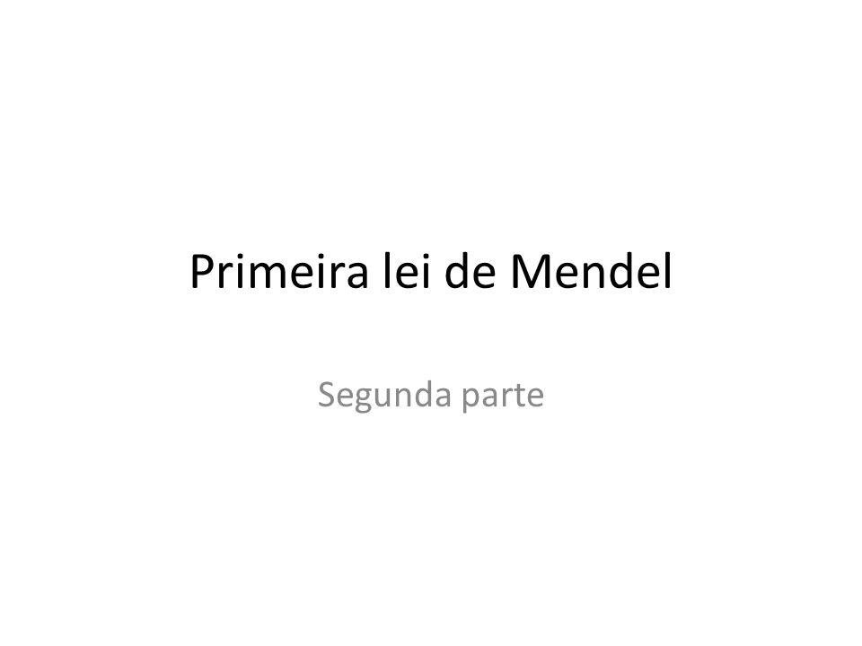 Primeira lei de Mendel Segunda parte