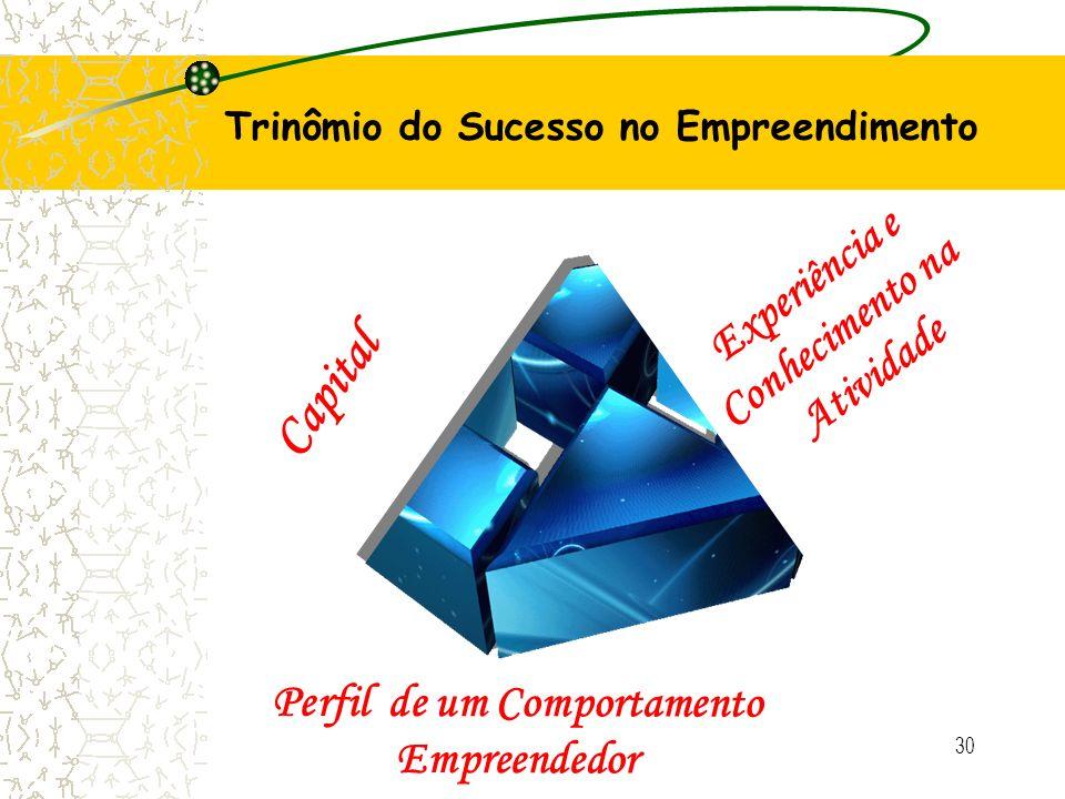30 Trinômio do Sucesso no Empreendimento Capital Experiência e Conhecimento na Atividade Perfil de um Comportamento Empreendedor